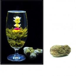Kvetoucí čaj - Květinový čaj, Mo Li Xian Zi, jasmínový květ, chryzantéma, laskavec