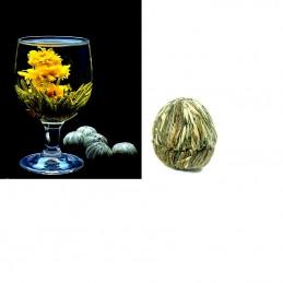 Kvitnúce, kvetinový čaj, Jin Hua Nu Fang, kvet nechtíka, zelený čaj, pre radosť a šťastie